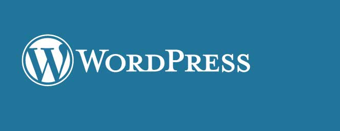 Three investments you should make for your WordPress site