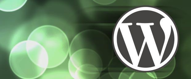 Rapid WordPress