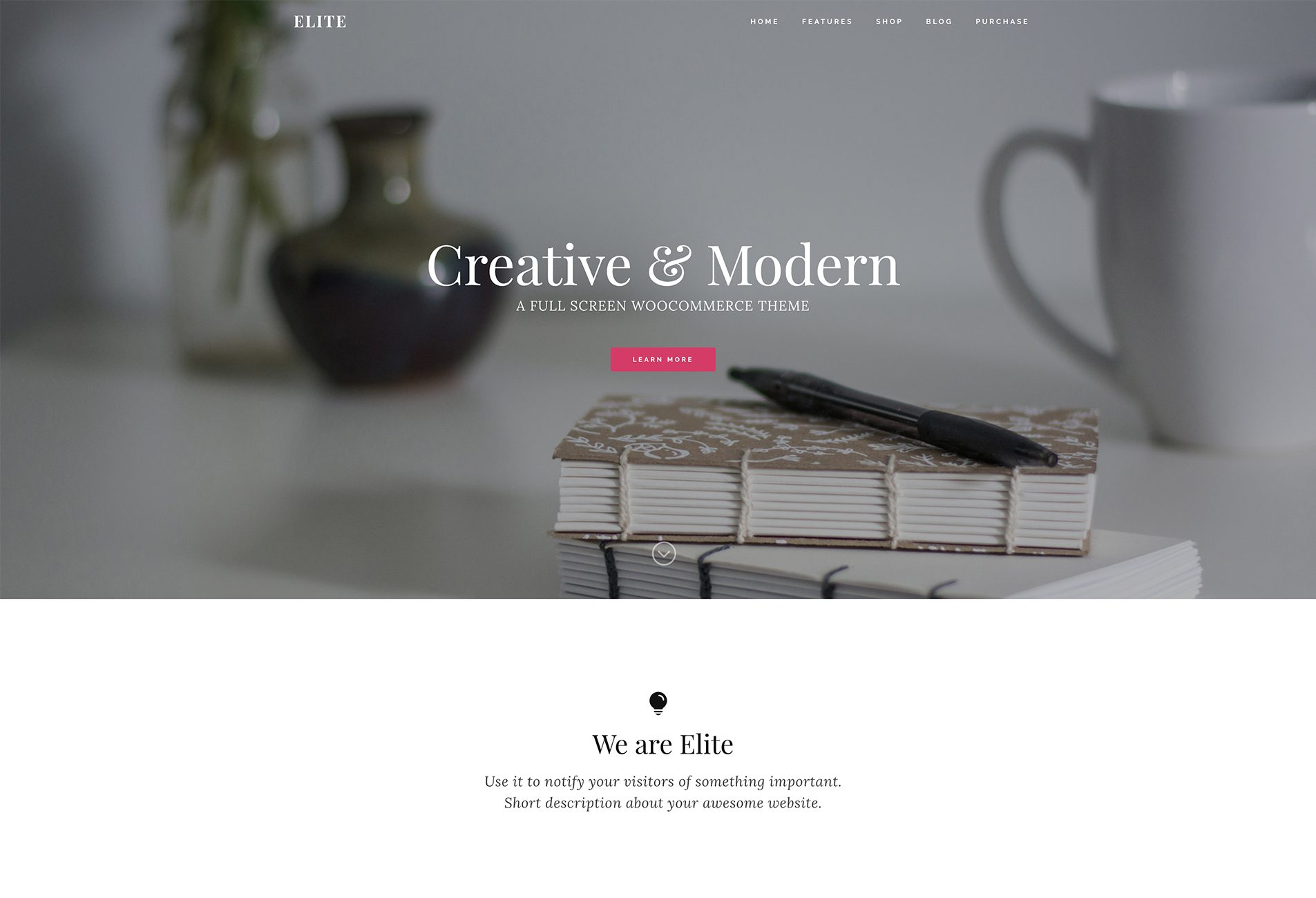 Elite WooCommerce theme